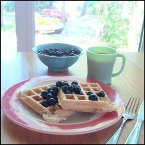 Grandma's Famous Waffles | www.jenniferdyck.com